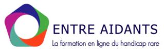 logo de la plateforme de elearning