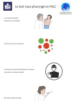 Description du test en FALC et en images