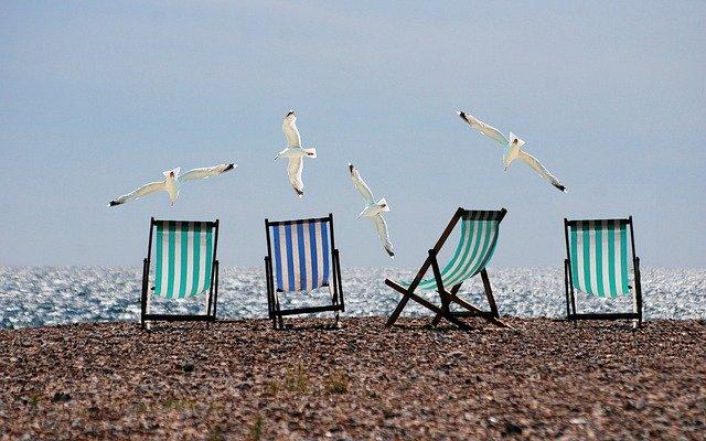 photo prise sur la plage où l'on voit 4 transats et des mouettes