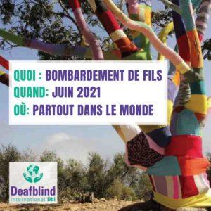 Affiche de DBI qui montre un arbre recouvert de carrés multicolores de tricots